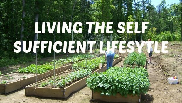 19 Steps to Self-Sufficient Living