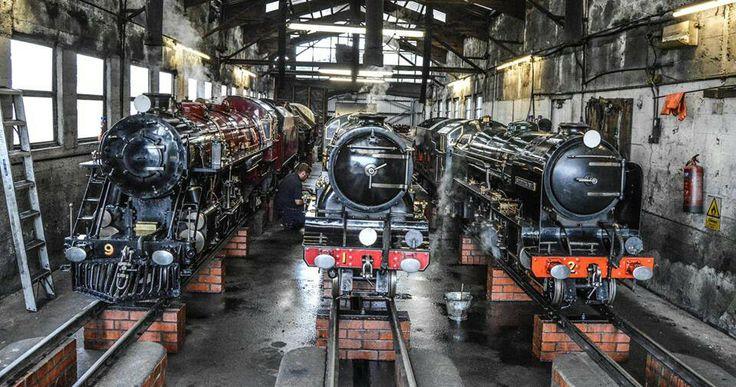 Engines in shed, Romney, Hythe & Dymchurch Light Railway.