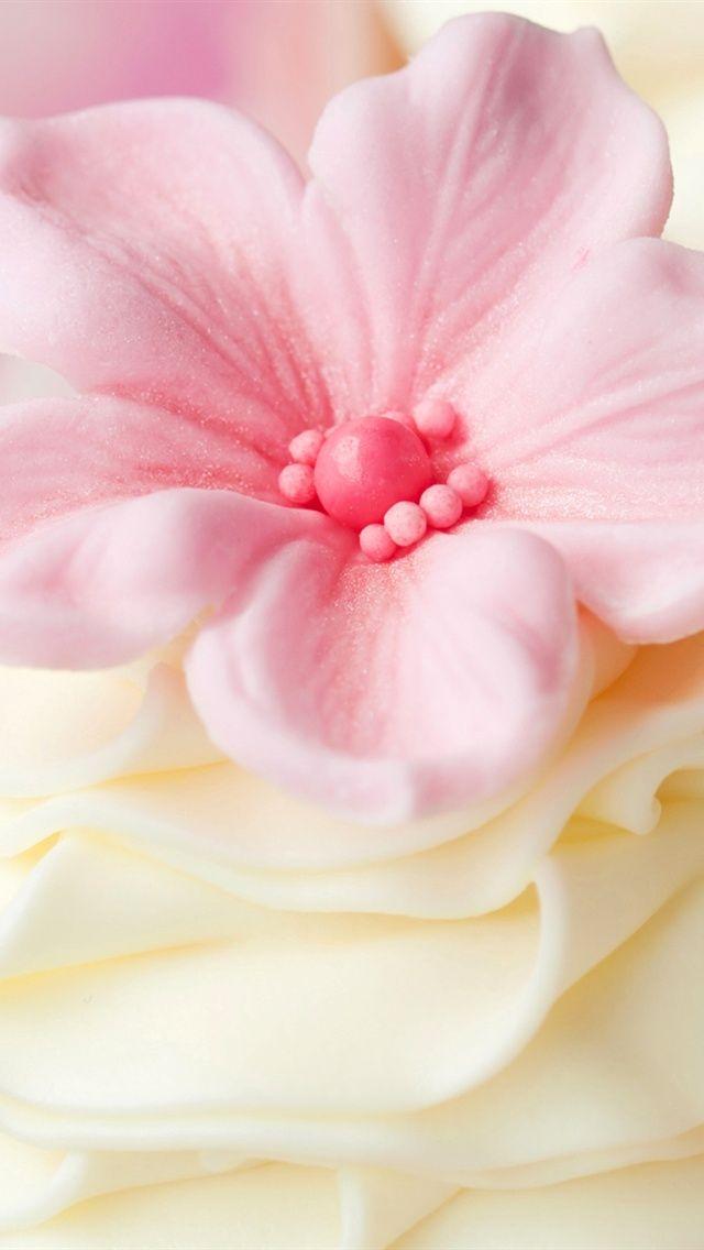 Розовый цветок украшения кремом iPhone 5 (5S) (5C) обои - 640x1136