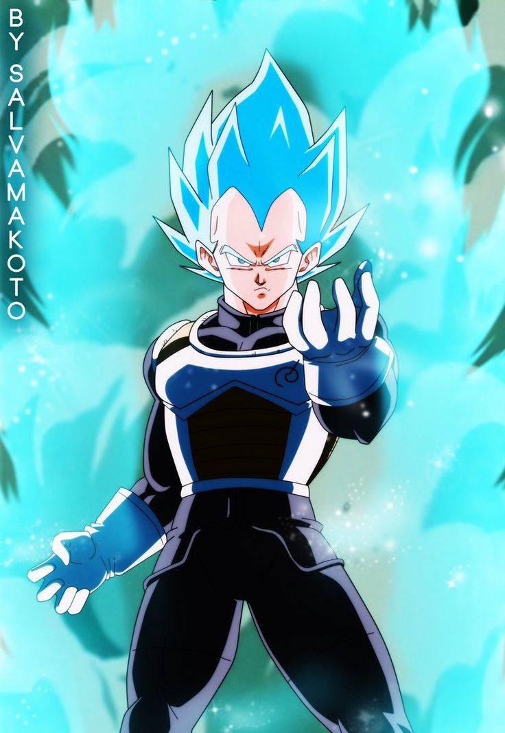 "The ""throwback"" gallery expands with SSJSS Vegeta from Dragon Ball Super drawn in the old-school style from Z that we all know and love. By salvamakoto from Deviantart."