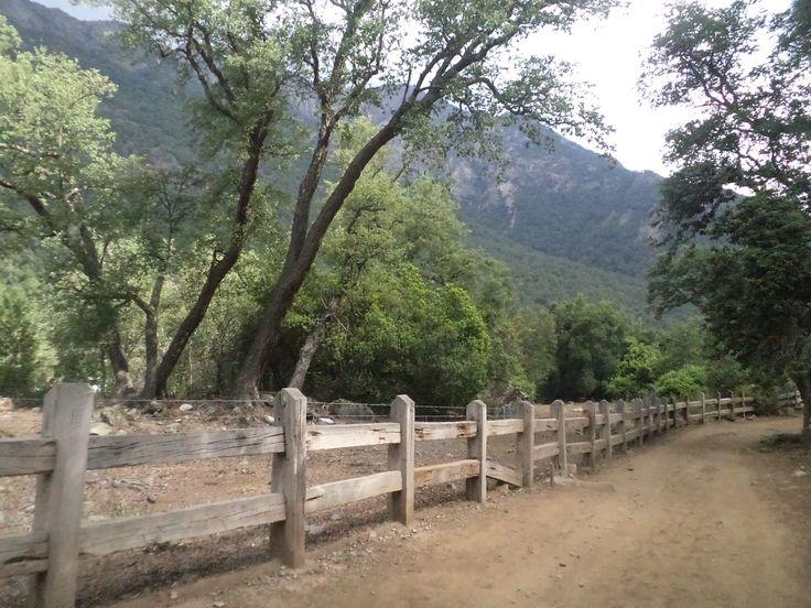 Tranqueras en el camino. Sector Monte Oscuro, Linares, Chile.