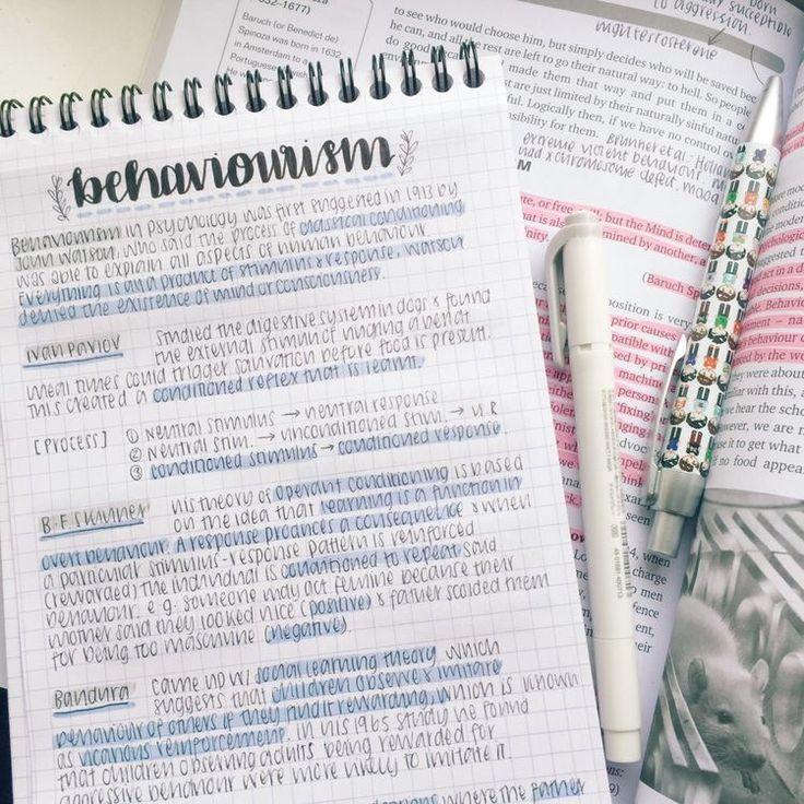 ριᥒtᥱrᥱ᥉t ᥲι᥉hᥲ Study notes, School organization notes