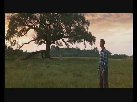 Forrest Gump - Sweet Home Alabama A combination of a GREAT song with a clips from a GREAT movie. Going back in time on the sound of the nation.....;-))