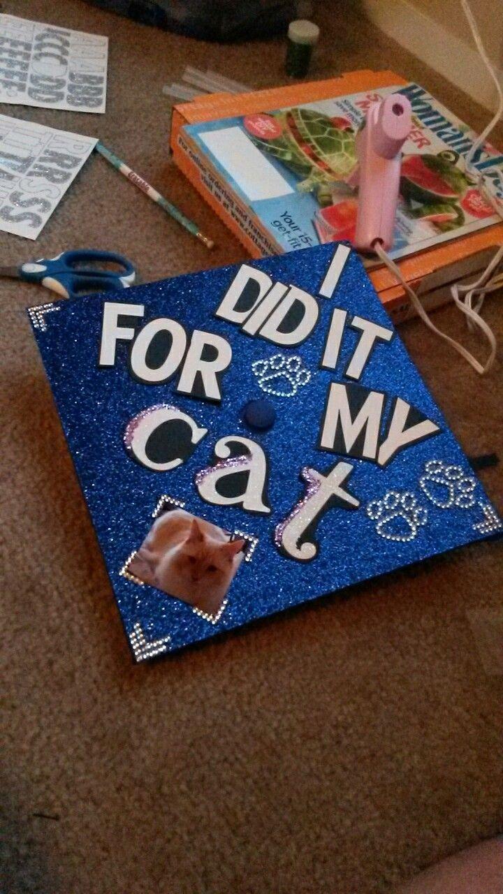 u0026quot i did it for my cat u0026quot  graduation cap with glitz