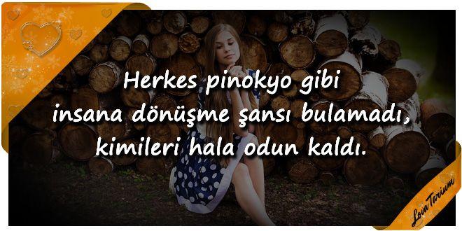 ♥ Herkes pinokyo gibi insana dönüşme şansı bulamadı, kimileri hala odun kaldı. ...