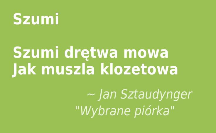 """Jakość mowy #drętwa #mowa #szumi #klozet #cytaty #Sztaudynger  Jan Sztaudynger """"Wybrane piórka"""""""