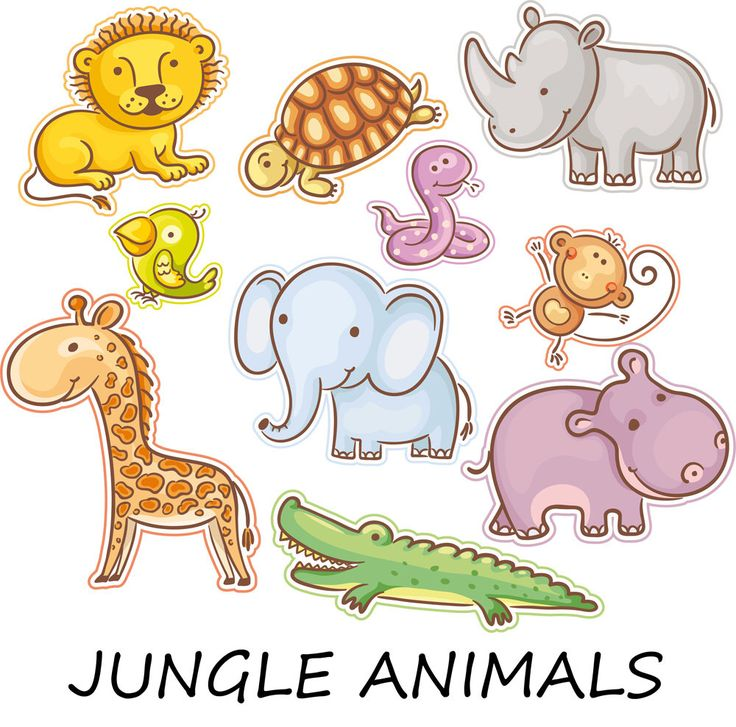 30% OFF AND MORE. 10 digital clip arts jungle animals for baby. Jungle animals. Jungle clipart. Animal clipart. Zoo clipart. Lion clipart. by EphrazyDesign on Etsy https://www.etsy.com/uk/listing/252698364/30-off-and-more-10-digital-clip-arts