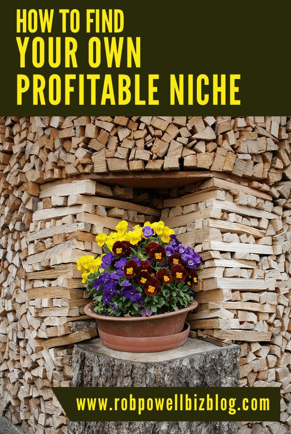 Your Own Profitable Niche black small