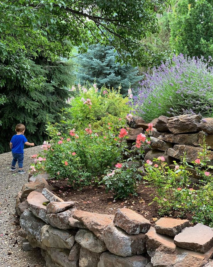 Benjamin Knows His Way Around The Garden I Love This Area At