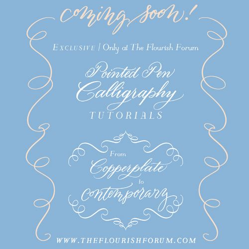 Best images about calligraphic flourishes on pinterest