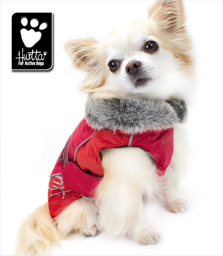 Winter Dog Coat - Hurtta Collection
