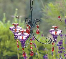Parasol Chandelier Hummingbird Feeder