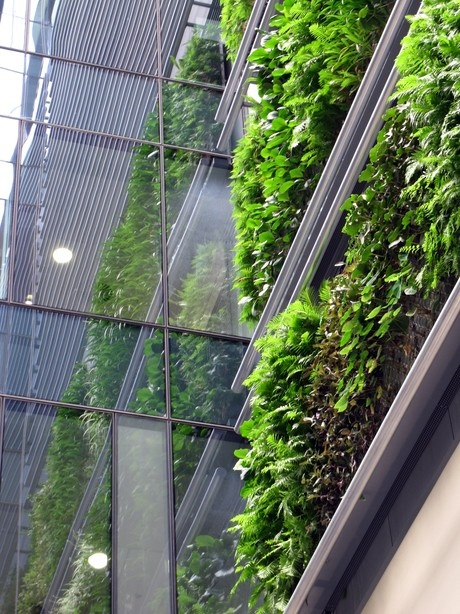 Britomart East Complex in Auckland, and at three-stories high, it is New Zealand's largest living wall
