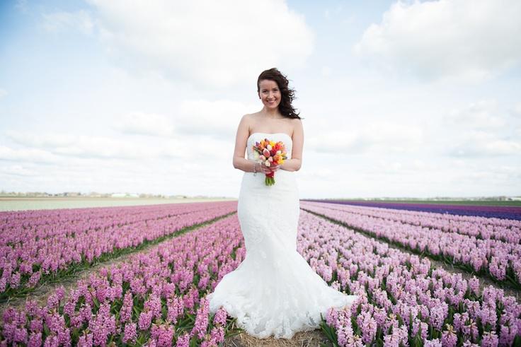 18 Best Dutch Theme Wedding Images On Pinterest Wedding