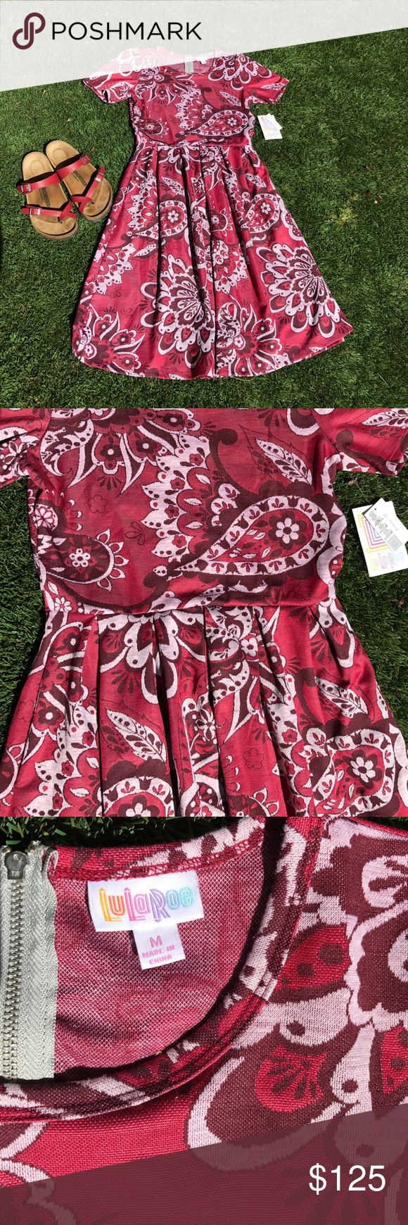 LuLaRoe Amelia Red Paisley Print. BNWT HTF LuLaRoe Amelia Dress. Size Medium.  BNWT.  Hard to Find Paisley Print!  This dress can be worn throughout the seasons. Pair it with boots, Birkenstocks, heels, or converse. Amelia is versatile and stretchy! Wear with the zipper in the back or the front!! This dress has POCKETS!! Smoke free home🦄.  Is this your Unicorn, Arrow, Elephant, Disney Roses, Paisley, or Owl Print? I provide same or next day shipping.  NOTE: Birkenstocks are NOT for sale…