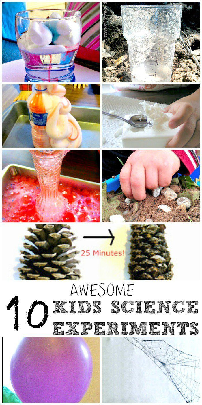 best 25 easy science experiments ideas on pinterest kid experiments science club activities. Black Bedroom Furniture Sets. Home Design Ideas