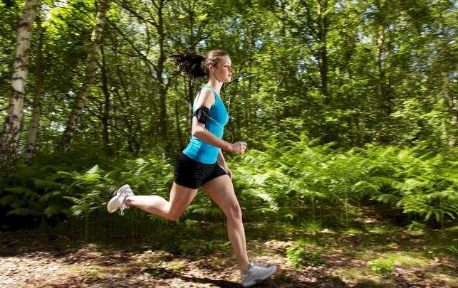 Sådan skal du træne og spise op til et halvmaraton - alt.dk