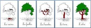 Sciences : Fabrication et autres - Les fleurs ça boit…… - Les différentes… - Et des cartes sur… - Cartes animaux… - Fabrication de… - Montessori chez moi