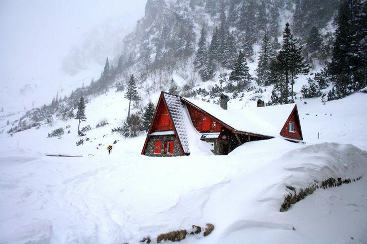 Winter at Malaiesti chalet, bucegi mountains