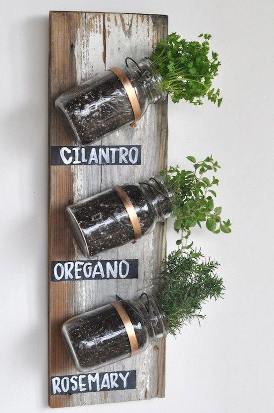 Mason Jar Herb Garden - Click image to find more hot Pinterest pins
