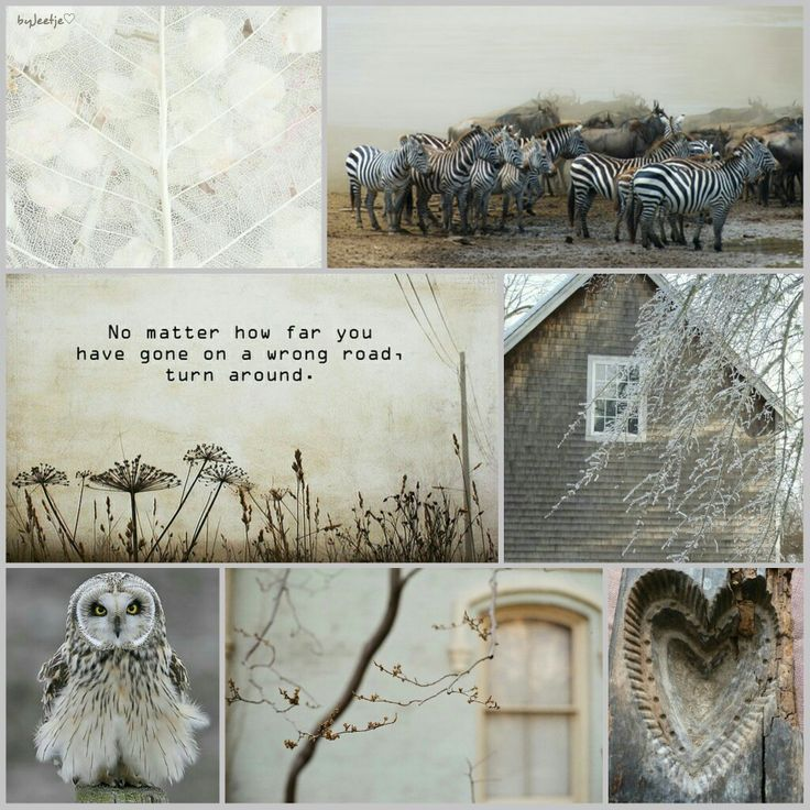 No matter how far you have gone on a wrong road, turn around. #moodboard #mosaic #collage #inspirationboard #byJeetje♡