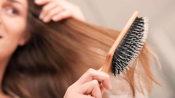 Reddit Hair Care Advice Best Hair Brush Healthy Hair Tips Hair Loss Remedies