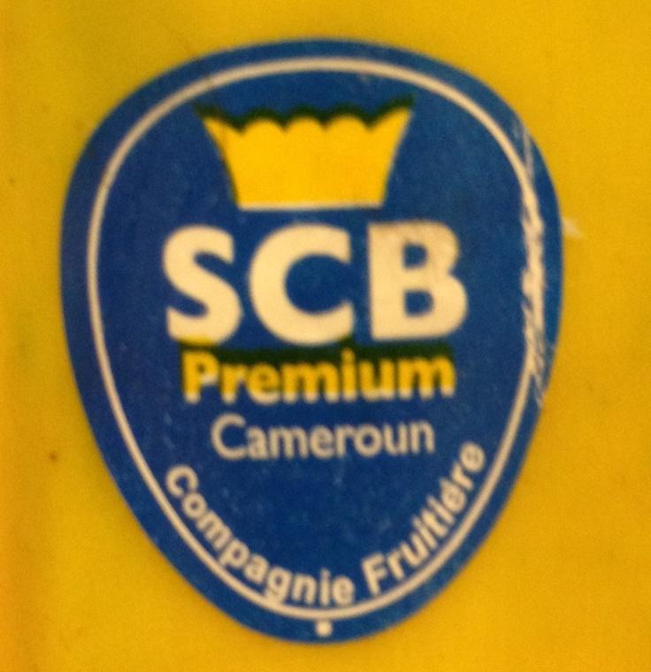 Scb Camerun