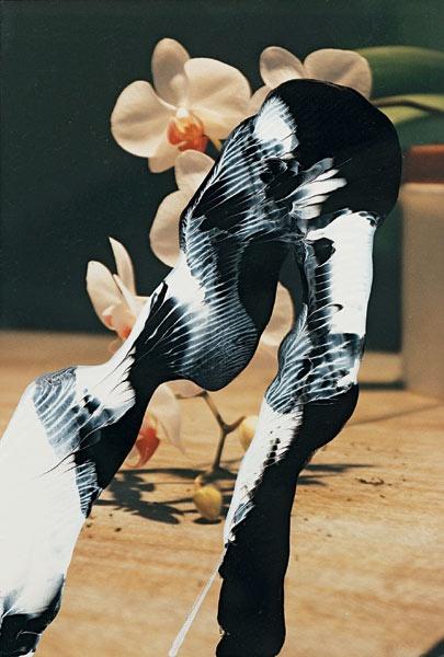Gerhardt Richter *Uebermalte Fotografien*