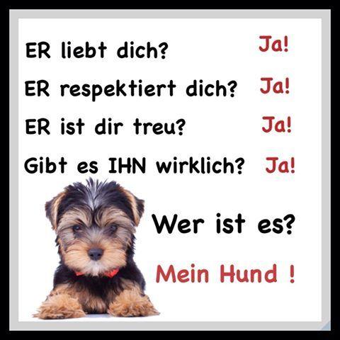 #geil #markieren #funny #derlacher #funnypics #lol #lustigesprüche