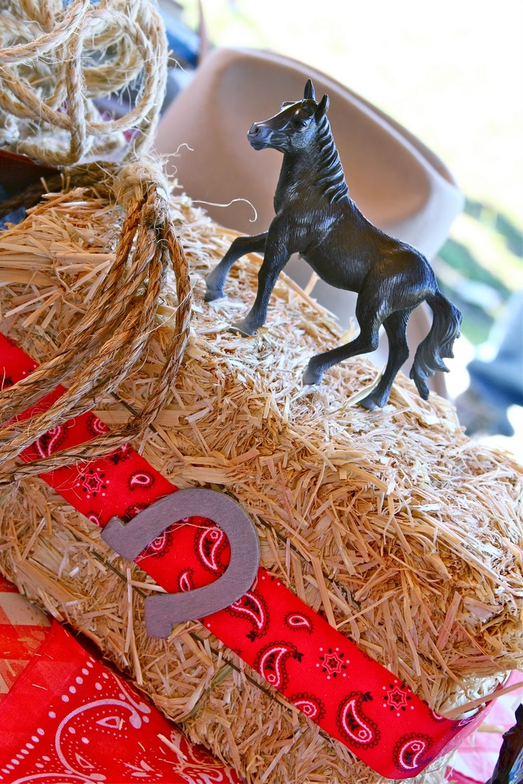 Cowboy party food ideas - Dollar Tree Hay Bales For Food Stands