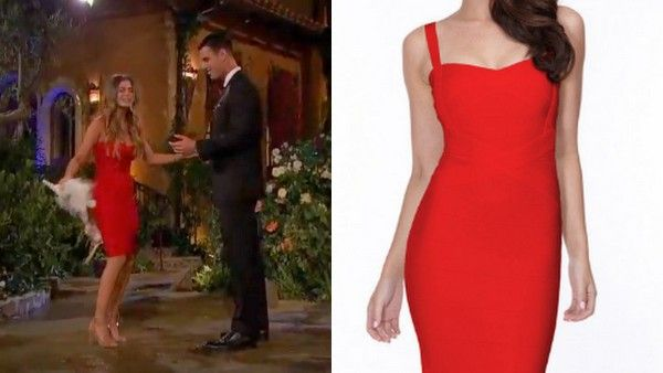 Possessionista Celebrity Style | The Bachelor premiere recap: Ben's young ladies | http://www.possessionista.com