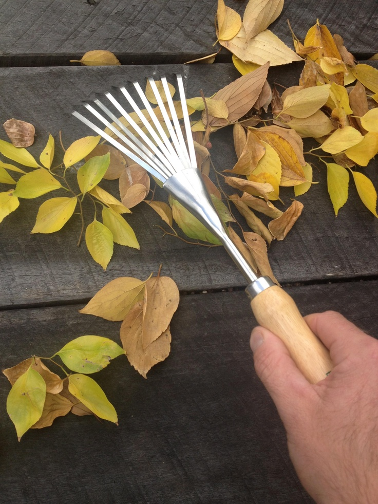Classic Stainless Shrub Rake from The Garden Tool Shop  www.gardentoolshop.com.au
