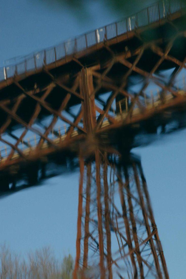 Realtà o finzione? Un ponte allo specchio. Un'ombra e il suo doppio. Sogno o son desta? Perché non riesco a dormire?