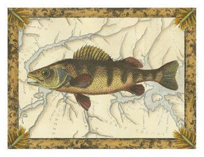 Fische (Dekorative Kunst) Gerahmte Kunst - bei AllPosters.ch