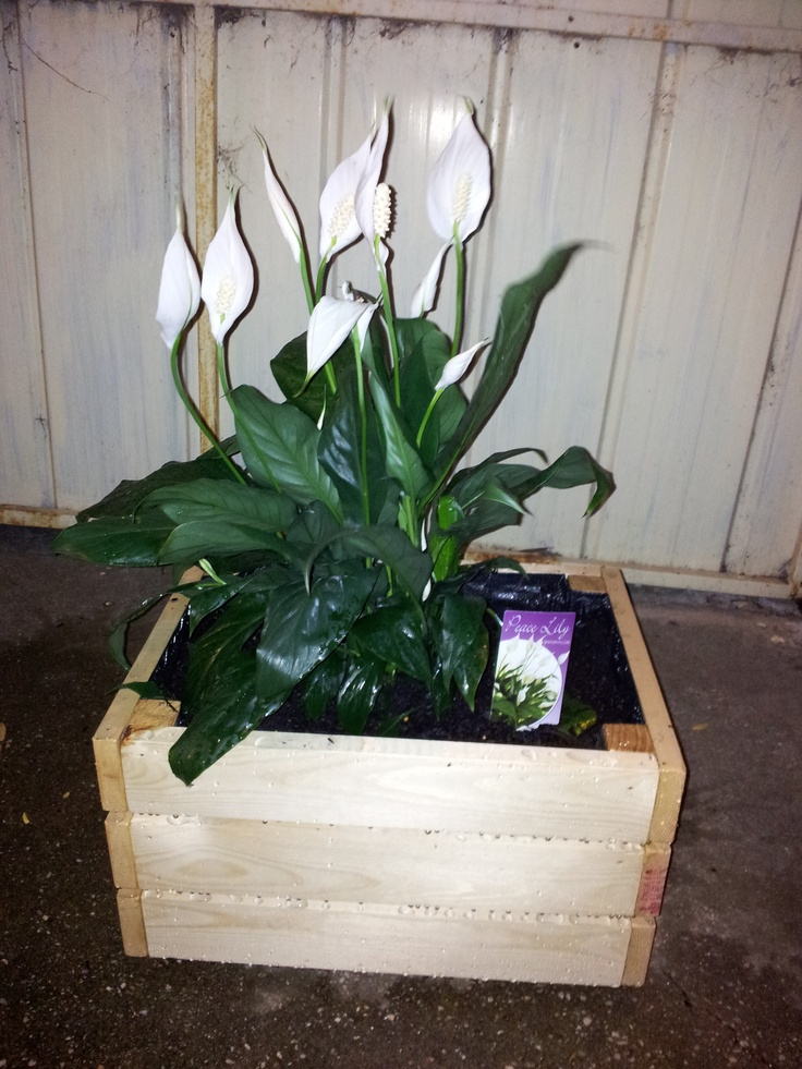 17 Best Images About Made To Order Planter Boxes On