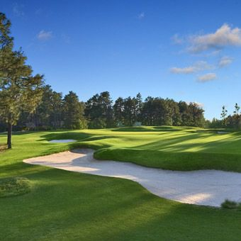 PINEHURST GOLF PACKAGE in New York   Live Auction Ideas   Charity Event   Benefit Auction   Gala Auction   http://www.timdecker.com/blog/live-auction-ideas-charity-event/