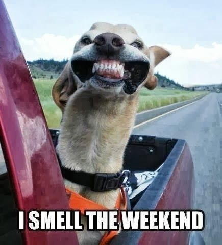 I smell the weekend! H...