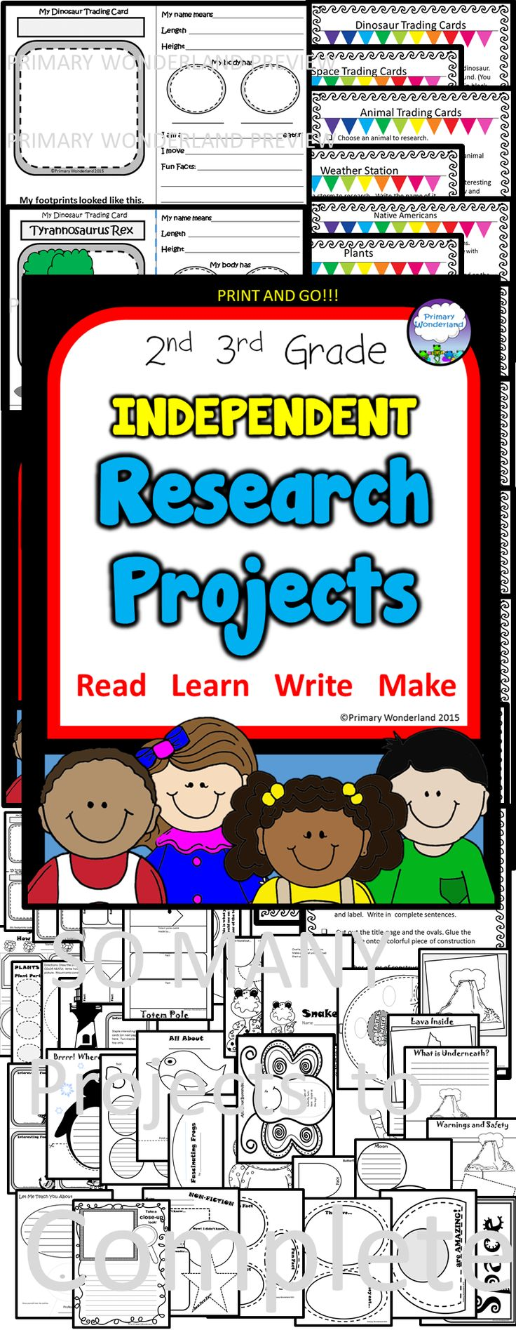 Research project help