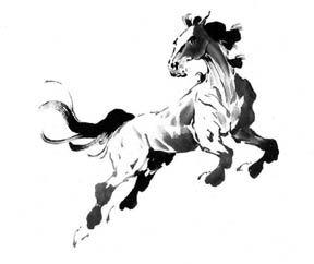 Jean Kigel horse leap look