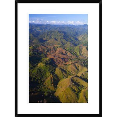 Global Gallery 'Lowland Tropical Rainforest Cleared for Cattle Farming, Soberania National Park, Panama' Framed Photographic Print Size: