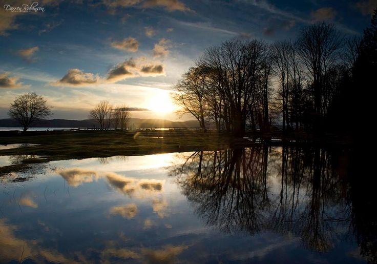 The Flooded Farm ~ Powell River, BC - Darren Robinson Photography