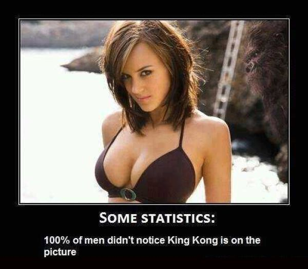 true funny: Funny Pics, Funny Pictures, King Kong, Funny Stuff, Humor, Photo, Funnystuff, Kingkong, Statistics