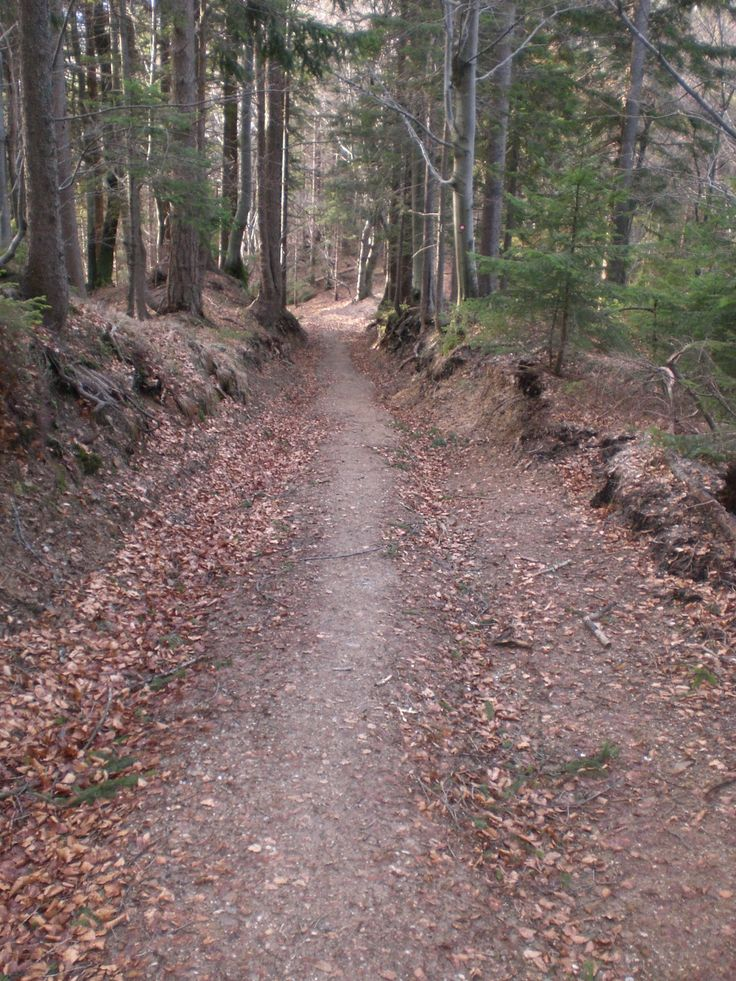 The path leads first downhill