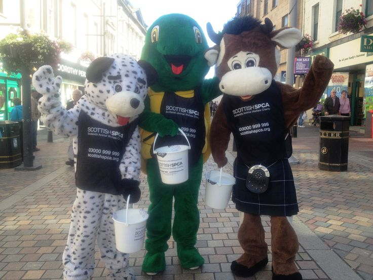 Latest news Scottish SPCA looking for volunteers to help raise funds