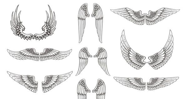 eagle wings drawing - Google Search