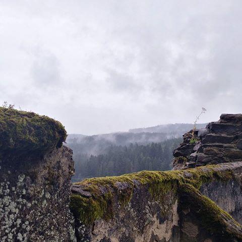 🌲. . . . . #hike #castle #ruins #colourpalette #foggy #rain #nature #hikestagram