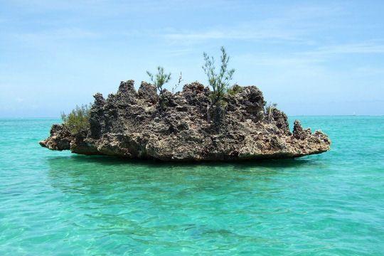 Avec ses plages d'aquarel et son atmosphère sereine, Maurice est l'île préférée des Français. Promenade sur ces îlots hors du temps.