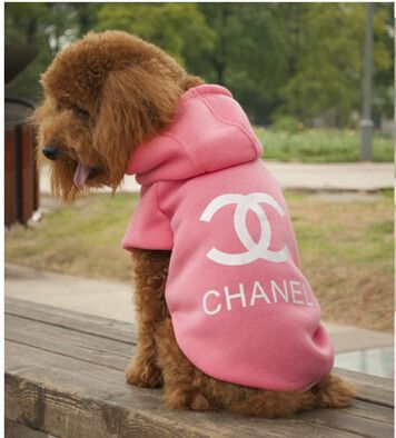 Fashion Dog Clothes Chanel Inspired Outfit #weekdaygirlnailboutique #dogclothes