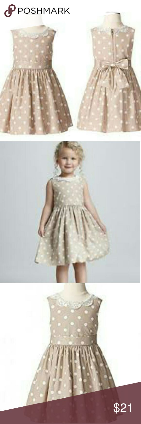 Jason wu polka dot dress Lace collar. Polka dots. Gorgeous dress. Zip up back with bow. Great worn condition. Jason Wu Dresses Formal