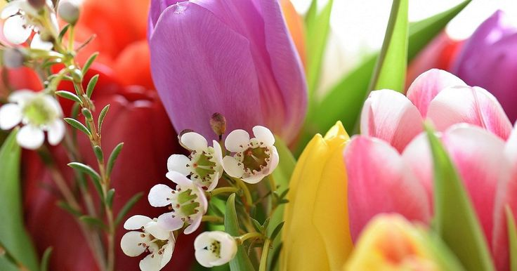 Tre metodi semplicissimi per essiccare i fiori e conservare il ricordo di quel momento più a lungo Il giorno del matrimonio, la nascita di un bambino, il primo incontro con la persona amata, sono mome